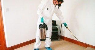 مبيدات فعالة للحشرات